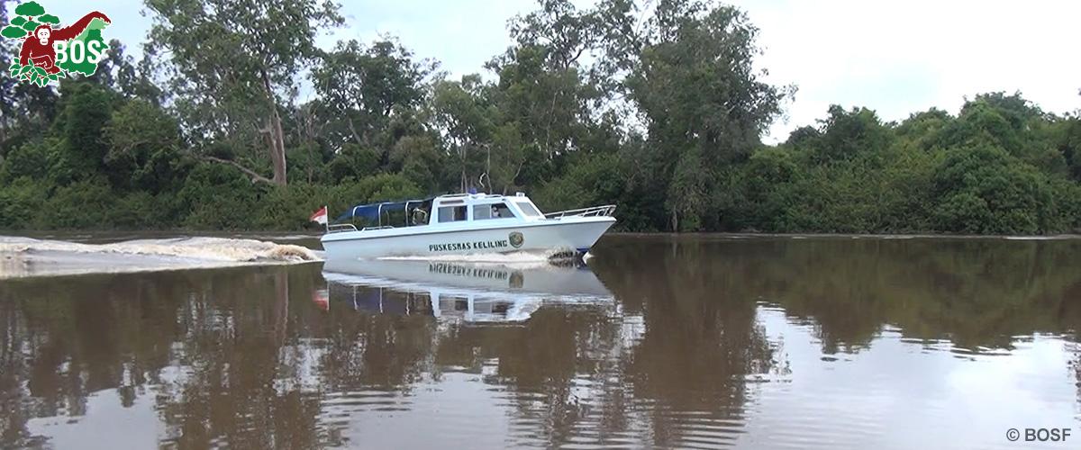 BOS Orangutan Freedom boat