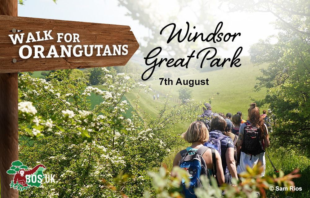 Windsor Great Park event